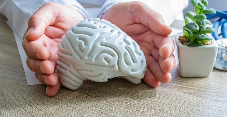 Rad mozga